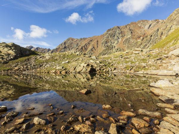 Laghetto alto sotto la punta di Monticelli - D17 106 (Luglio 2018)